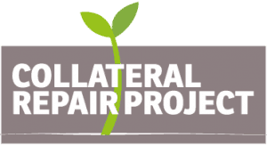 Collateral Repair project logo Final3 300x164